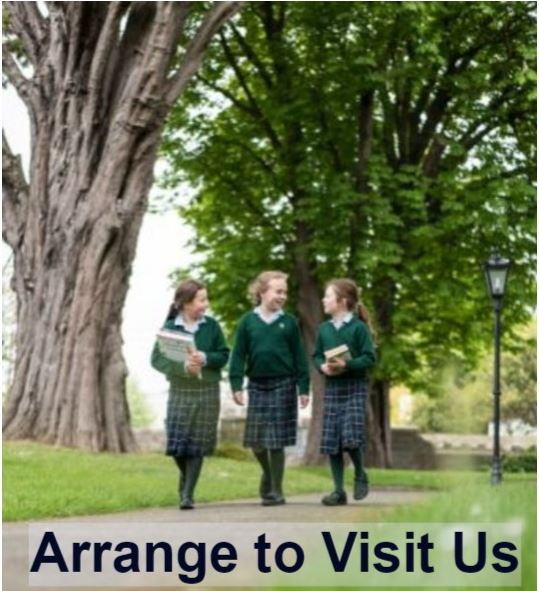 Arrange to Visit Us